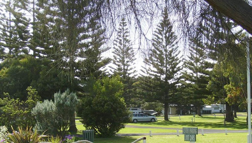 Powered Sites and Camping Sites - Narrawong Island Holiday Park